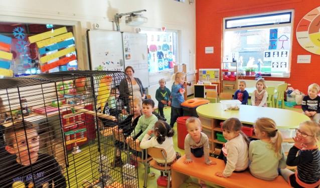 De kinderen van groep 1/2 zitten gezellig in de kring. Ze hebben ook vogels in de klas en dat vinden ze erg leuk!