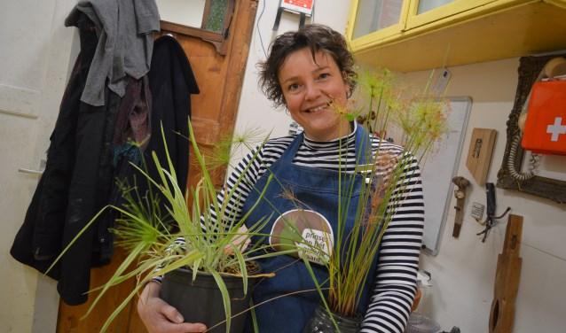 Mies Knippenberg uit Roosendaal met twee planten die een nieuw leven tegemoet gaan. Bij haar thuis is zij een plantenasiel gestart en heeft ze al bijna 100 'slonzen' bij haar inwonen. ,,Zelfs de vensterbanken van de slaapkamers van de kinderen staan vol.'' FOTO: TIMO VAN DE KASTEELE