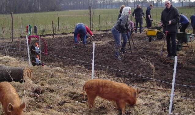 Voorbeeldtuinen Kleine Tuin : Aanleg voorbeeldtuin bij het nieuwe veld deventer post