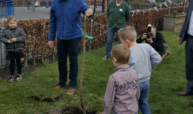 Boomplanting 2017 bij De Rode Loper door kinderen van de BSO.