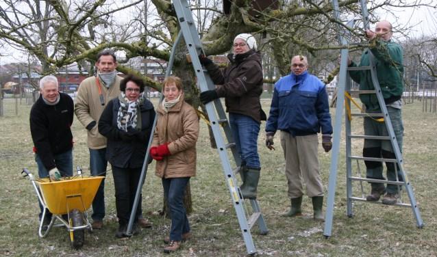 Stichting Dorpsboomgaard Winssen doet mee aan NLdoet. De vrijwilligers gaan aan de slag met een houten afrastering.