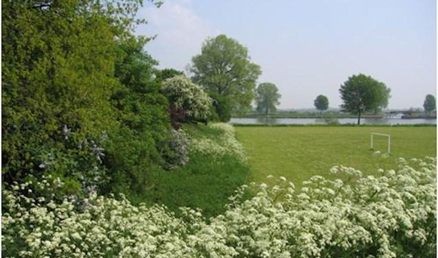 Het is mei en het landschap hangt vredig aan de met een enkel wit wolkje bedekte blauwe lucht.