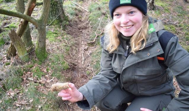 Boswachter Lydie met een door een bosdier afgekloven maïskolf.