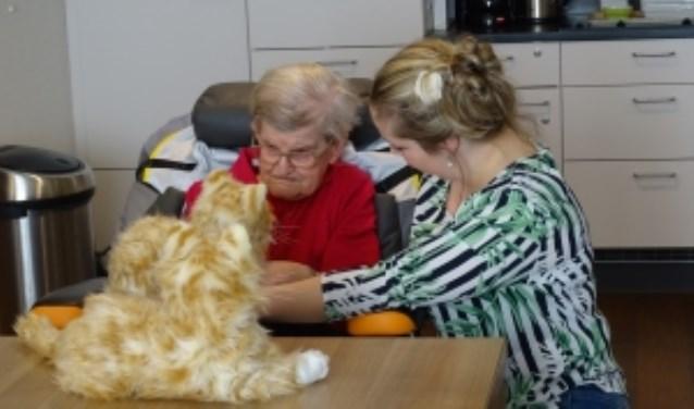 Samen voor de kat zorgen. Foto: Mirjam de Boer