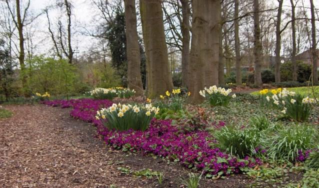 Het is bijzonder dat zo'n tuin te vinden is in het centrum van een kleine plaats als Oudenbosch.