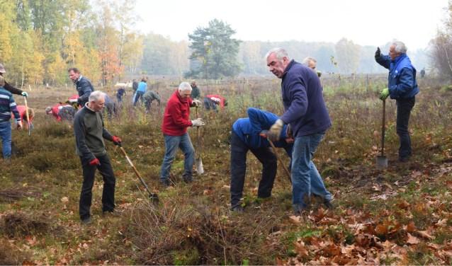 Staatsbosbeheer en Landschap vormen een nieuwe vrijwilligersgroep die gaat helpen bij allerlei werkzaamheden in de Twentse natuur. Foto: Alwie Olde Hanter