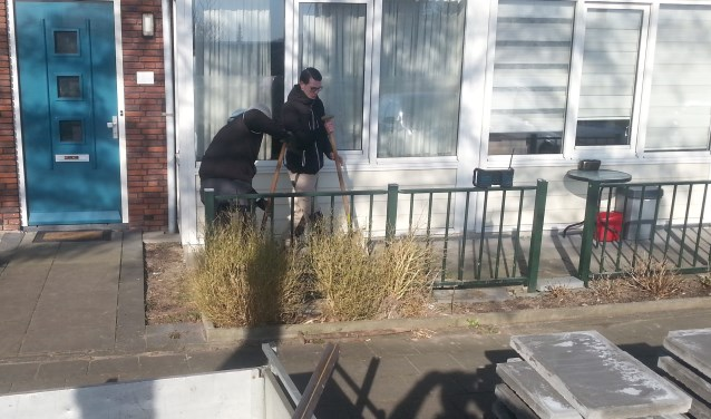 Groepen vrijwilligers gaan aan de slag in tuinen waar leerlingen van het Edudelta College vervolgens het opknappen van de bestrating voor hun rekening nemen.