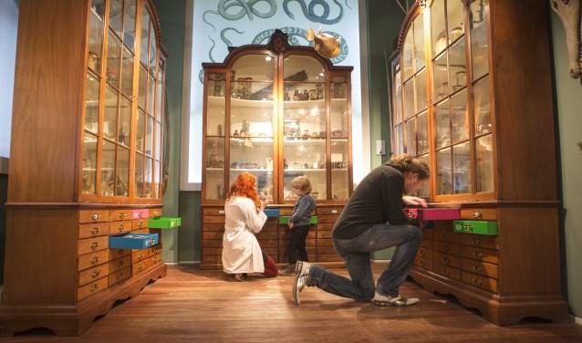 Van 9 tot en met 15 april worden bijzondere objecten getoond in het Universiteitsmuseum. Foto: Ivar Pel