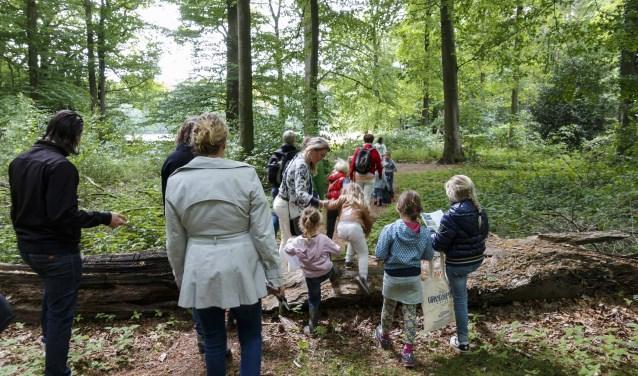 In het gebied tussen de watermolen van Frans en de Galgenberg zet Landschap Overijssel een speurtocht uit. Foto: Henrica de Joode