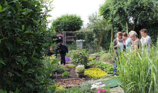 Mensen met een klein balkon of een grote tuin, samen op excursie naar verschillende tuinen om ideeën op te doen.