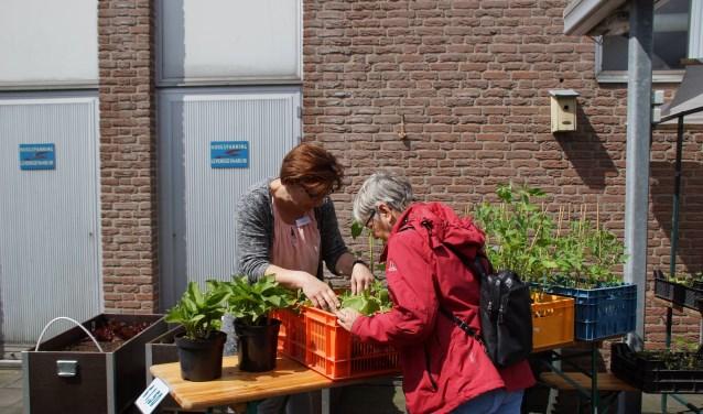 De jaarlijkse Voorjaarsmarkt in en om Dagactiviteitencentrum de Singel is volgende week woensdag weer.