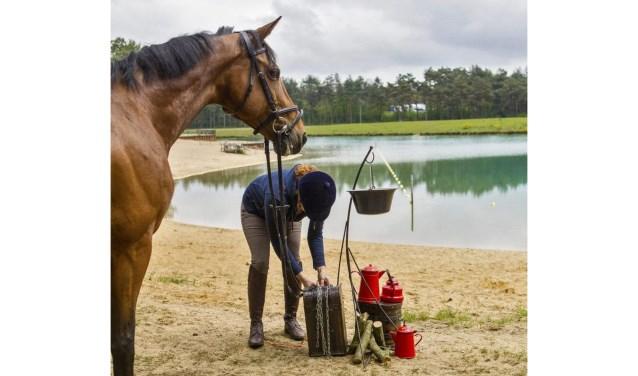 Tijdens een HorsEscape is het de bedoeling puzzels op te lossen, waardoor kisten geopend kunnen worden. Die puzzels vragen een goede band tussen ruiter en paard, omdat het paard veelal rustig moet blijven of iets moet doen dat het normaal niet zou doen.