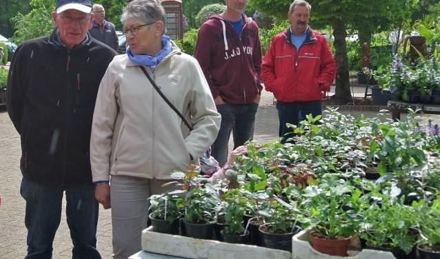 Op zoek naar een plant of stek? Keus genoeg tijdens de plantenmarkt met ruilbeurs van de Fuchsiavrienden.