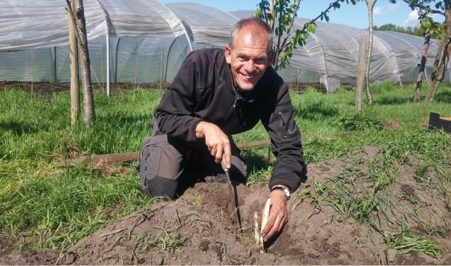 Peter Sprangers bij zijn asperges (foto: Jessica Voets). Bent of kent u iemand met een inspirerend verhaal? Neem dan contact op via: jes@jessicavoets.nl