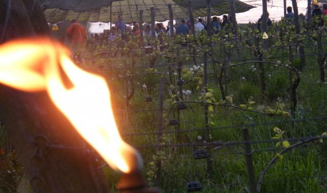 Fakkels en vuren zorgen voor een bijzondere sfeer tijdens de Nacht van de Wijngaard op Wijngoed Montferland. (foto: PR)