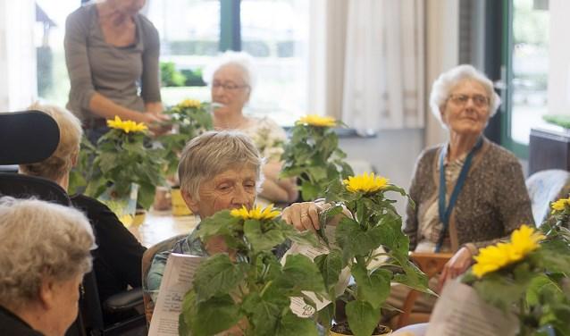 Bij verpleeghuizen in de regio werden zonnebloemen met kleurplaten uitgedeeld. De ontvangers waren zichtbaar verrast.