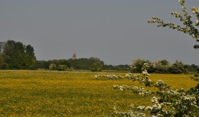 Overzicht Rosandse Polder met kerk Oud-Zevenaar