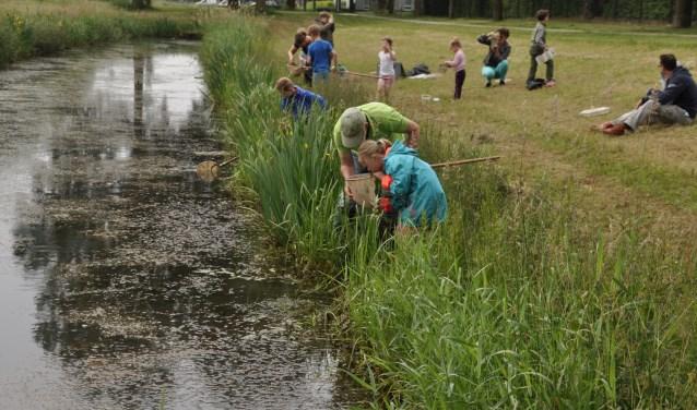 Jonge natuurliefhebbers gaan op zaterdag 9 juni onderzoeken wat er allemaal in het water leeft. (foto: PR)