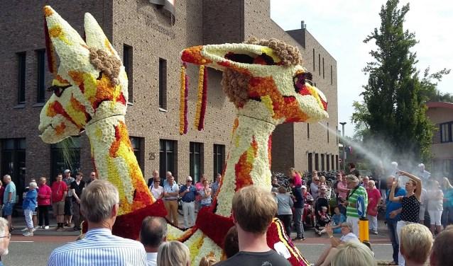 Bloemencorso Winterswijk 2017