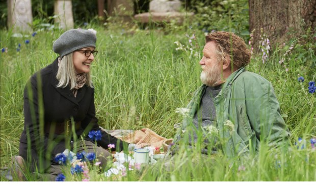 Het leven van Emily Walters (Diane Keaton) krijgt een verrassende wending als ze Donald (Brendan Gleeson) ontmoet,