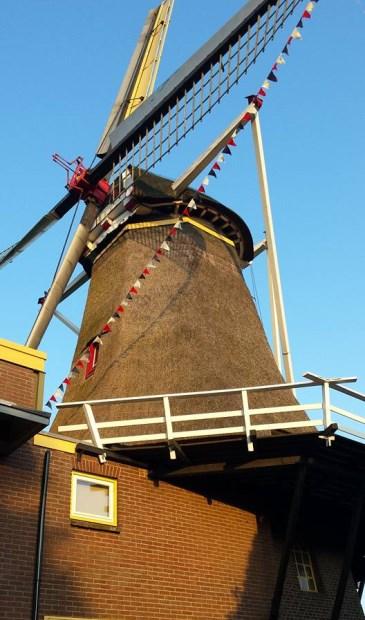 Grutterij-Molen De Hoop in Oud-Zevenaar doet ook dit jaar weer mee aan de Nationale Molendag. (foto: PR)