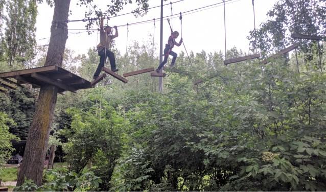 De scouts klommen tijdens het Hemelvaartskamp tot ver in de boomtoppen.(Foto: Richard Sprui)