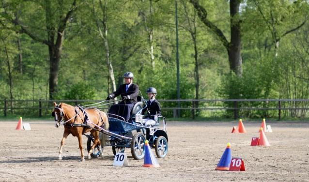 Een deelnemer aan een vaardigheidswedstrijd van de Hamelandse Menners enkele weken geleden.