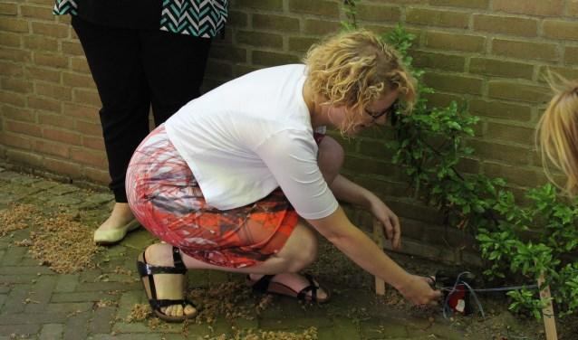 Manon Wensink-Veenhuis knipt het lintje bij het eerste Kabouterdeurtje open,de Kabouterroute is nu officieel geopend. (foto: Leo van der Linde)