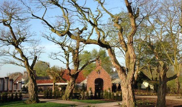 Acaciahof in Mill.