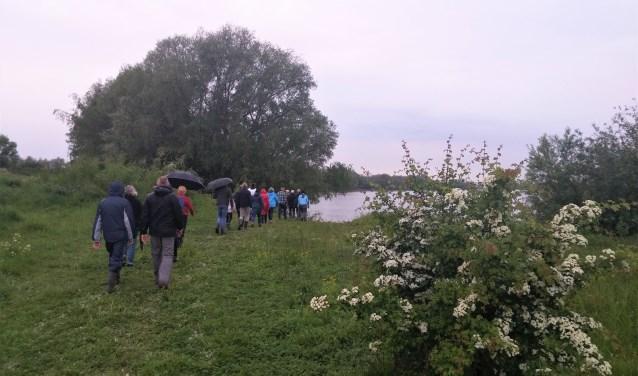 Dauwtrappen is een Hemelvaarttraditie, ook in Hurwenen. Twintig vroege wandelaars genoten donderdag 10 mei van de ontwakende Hurnse uiterwaarden. Geen wandelschoen bleef droog. De twee uur durende tocht eindigde met een gezamenlijk ontbijt in het Hurns Kerkje.