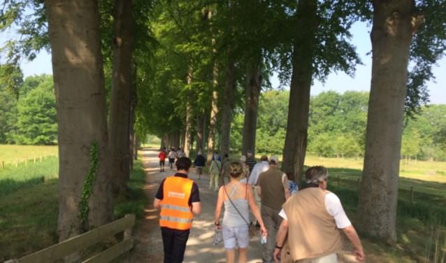 In Breda kunnen zich nog altijd mensen met én zonder diabetes aansluiten bij een van de wandelgroepen van de Nationale Diabetes Challenge. Meer informatie daarover vind je op www.sportloketwestbrabant.nl.