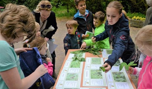 Kinderen gaan op 23 mei samen met vrijwilligers van Landschap Overijssel de natuur in op zoek naar wat voor lekkers de natuur biedt.