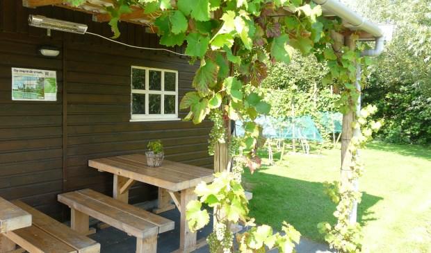 Domein Oosteind in Goudriaan, één van de drie wijngaarden die aan de 'open middag' meedoen. Eigen foto