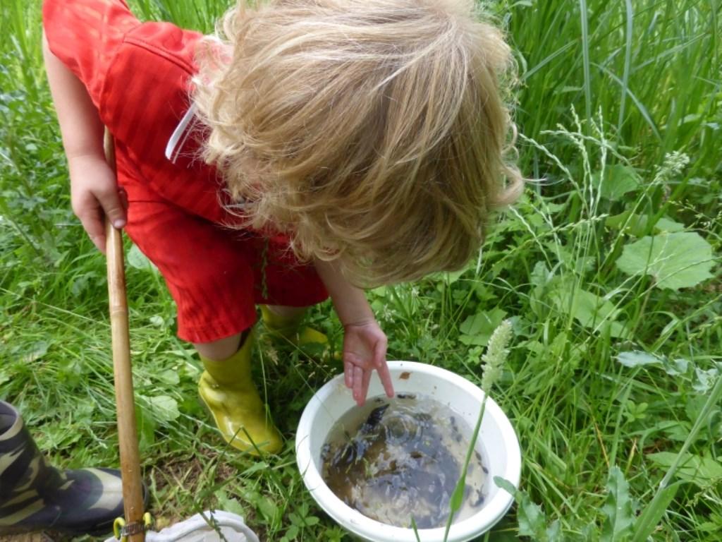 Jong geleerd oud gedaan Foto: Joke Veltkamp © Persgroep