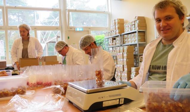 Joshua, Ben en Robin verpakken, onder toeziend oog van begeleider Anouk de Ruiter, het snoep in de Snoepfabriek op Plurynlocatie Het Hietveld.