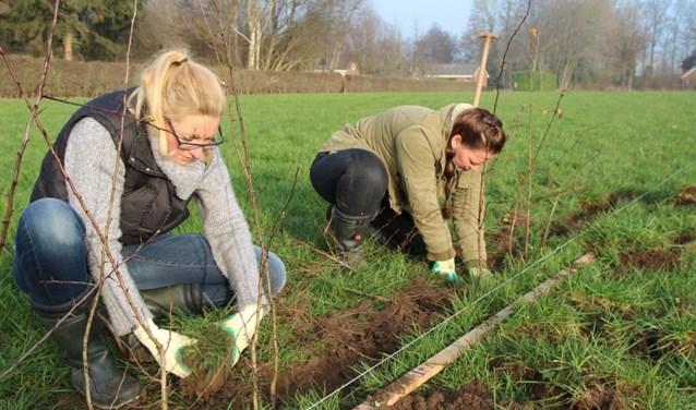 Een beplantingsproject voor het buitengebied is op komst. Foto: PR