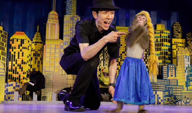 8/10Three times a day, at the Nikko Sarun Gundan theater, monkey trainer Yayushi performs with his monkey Hiroshi . Hiroshi misbehaves while being dressed up as Elsa from Disney's Frozen, so Yayushi reprimands corrects the well trained monkey. This commercial form of monkey entertainment derived fro