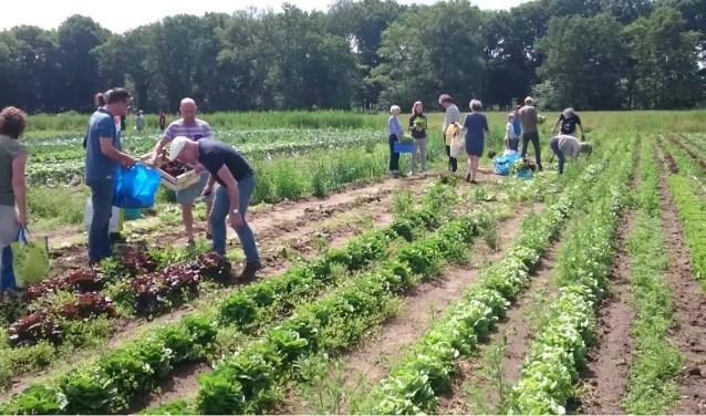 Veel Brabantse ondernemers zijn duurzaam bezig met de toekomst van ons eten. Foto: VisitBrabant.