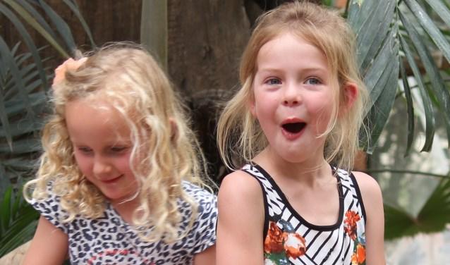 Extra veel plezier deze zomer in DierenPark Amersfoort. (Foto: DerenPark Amersfoort)