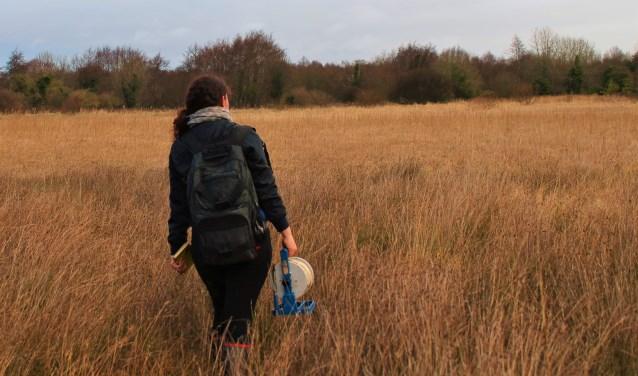 Ella Bijkerk focust zich voor haar werk op het laagveen. Hier is ze aan het werk in Pollardstown Fen. FOTO'S: Archief Ella Bijkerk