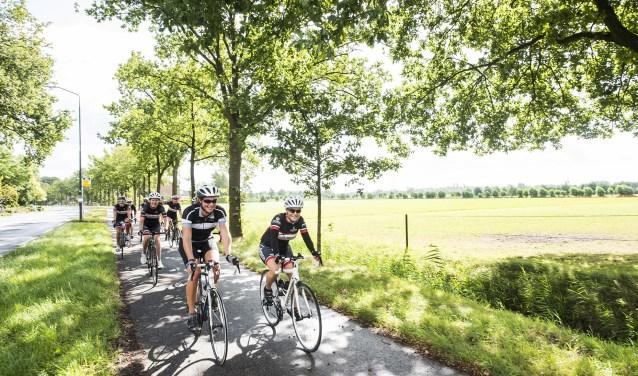 Het is heerlijk fietsen op de Utrechtse Heuvelrug. Dat willen de organisatoren graag onder de aandacht brengen tijdens de tv-uitzendingen van de Vuelta in 2020. (Foto: Anne Hamers)