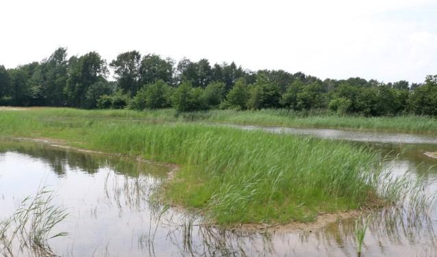 De KNNV houdt op vrijdag 8 juni een rondleiding op drinkwaterwinning Hammerflier
