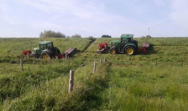 Waterschap Aa en Maas is verantwoordelijk voor de maaiwerkzaamheden op de dijken langs de Maas. (foto: persfoto)