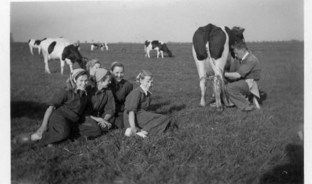 En voor leren melkenbestonden cursussen. Boerendochters krijgen les in 1953 van Wim Kooi, die liet zien hoe je moest melken. (Foto: Janny Manschot-den Oudsten)