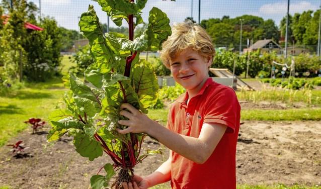 SLIEDRECHT – Op woensdag 27 juni 2018 was het Oogstfeest voor de kinderen van groep vijf van de Oranje Nassauschool  en de Prins Willem Alexanderschool.De kinderen van de twee basisscholen hebben ieder een eigen stukje tuin bij de Sociale Moestuin aan de Lijsterweg in Sliedrecht  om hun eigen groent