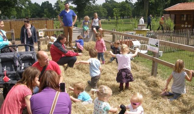 Op de kinderboerderijdag op zondag 10 juni kunnen kinderen zich uitleven in het hooi.