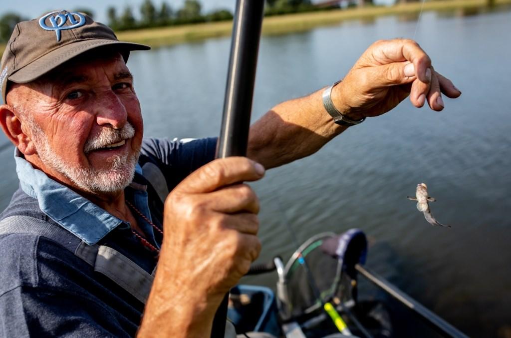 Viswedstrijd Rijnweek. (Foto Saskia Zeller)  © Persgroep