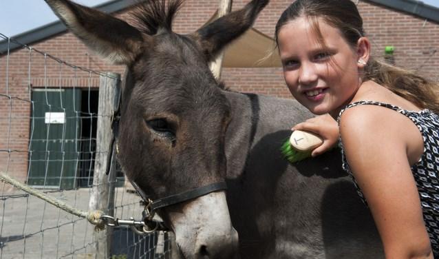 Kinderen doen in de dierenstal op Park Lingezegen allerlei klussen. De beloning is het kinderboerderijdiploma. (foto: Ellen Koelewijn)