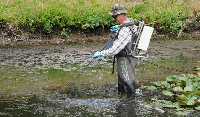 Vissen redden uit bijna droge vijvers sportvisserij oost for Vissen vijver