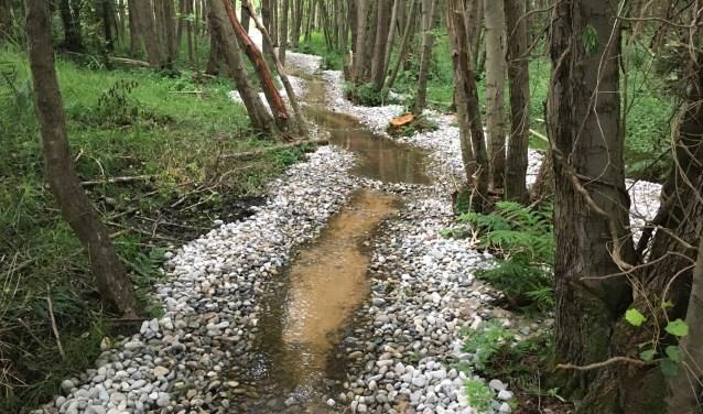 In het Natura 2000-gebied worden  komende jaren  verschillende maatregelen genomen om het te beschermen voor de toekomst. Zo wordt de natuur versterkt en kunnen economische ontwikkelingen plaatsvinden.